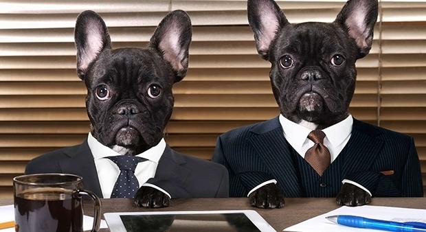 Босс не прав или Какие вопросы не надо задавать на собеседовании