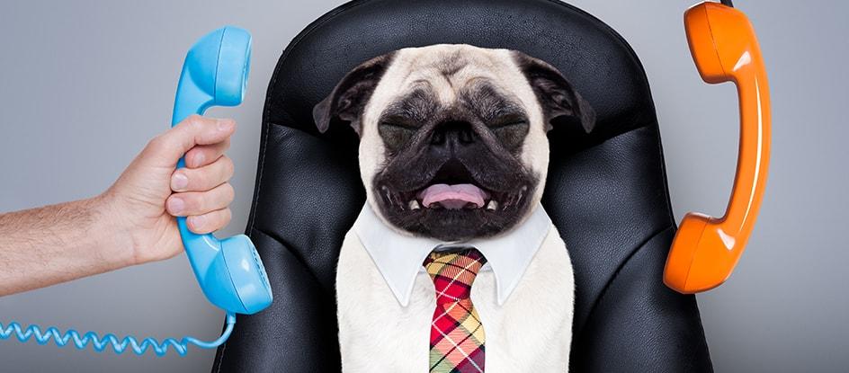 5 ярких признаков работника, который убьет ваш бизнес